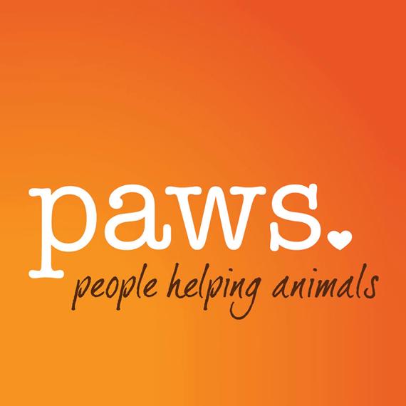 4 - Paws